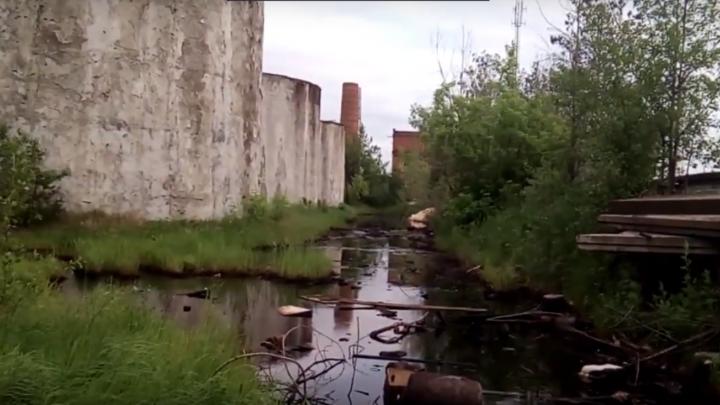 В Чайковском уже год не ликвидируют утечку нефти. Это может привести к серьезному пожару