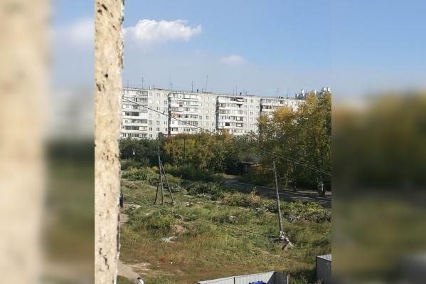 Рабочие не показывают местным жителям разрешений на снос деревьев