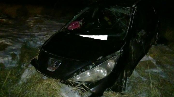 Жительница Уфы на Peugeot вылетела в кювет в Курганской области