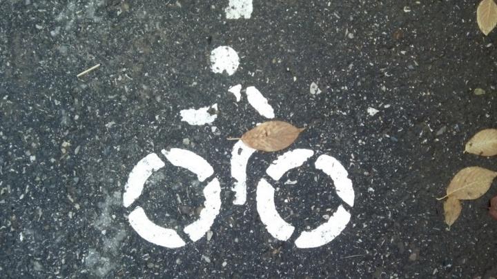 Главный полицейский Перми предложил организовать на набережной велодорожку