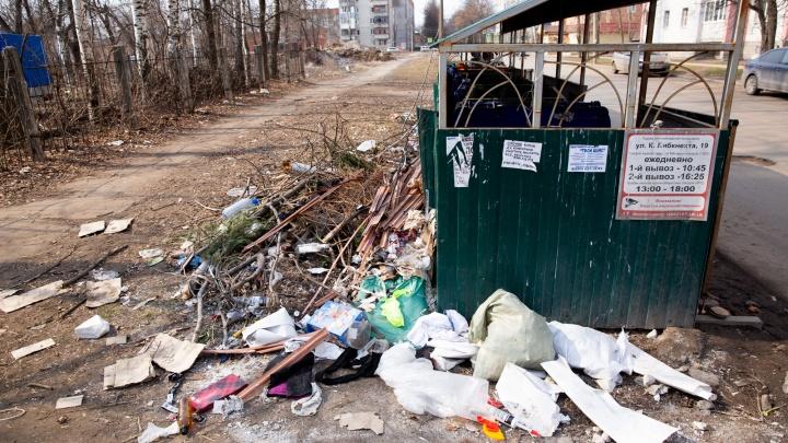 «На улицу страшно выходить»: ярославцы пожаловались, что погрязли в мусоре