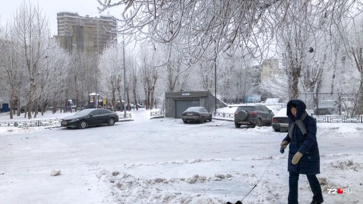 Тюмень завалит снегом? Какая погода ждет горожан в выходные