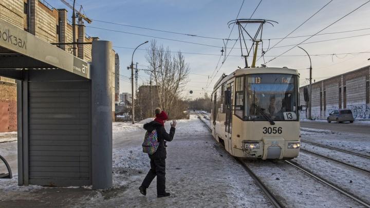 В Новосибирске начали бесплатно возить детей из-за новогодних каникул