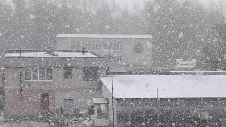 Вот это хлопья! В городах Свердловской области выпал первый снег