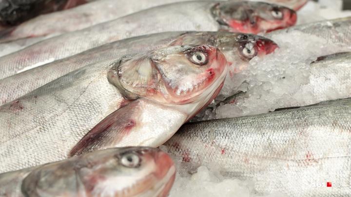 Нелегальную донскую рыбу задержали на границе с ЛНР