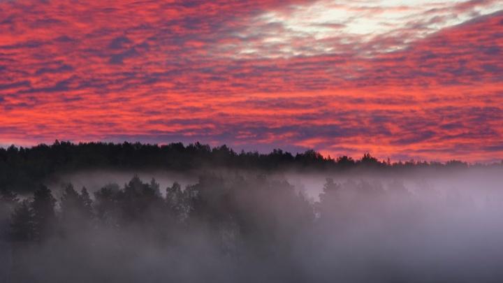 Инженер снял мистический рассвет над туманной Бердью