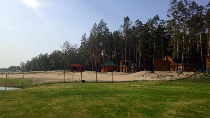 Руководство базы отдыха на Муллашах заплатило 150 тысяч за падение дерева на беседку с клиентами
