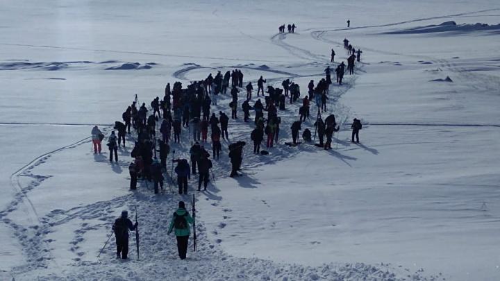 Палки в руки — и вперёд: 160 сибиряков три дня идут на лыжах вдоль Обского моря