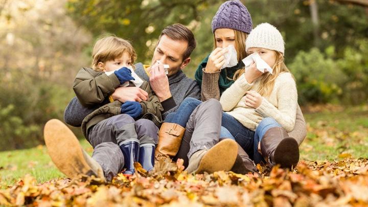 Как уберечься от простуды в холода