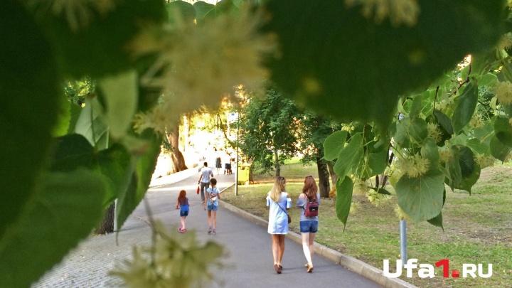 Сегодня без осадков: синоптики рассказали, какими будут последние дни лета в Башкирии