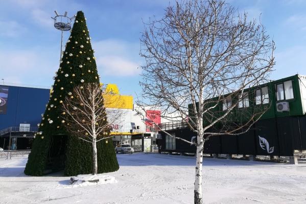 Внутрь ёлки можно будет зайти и сделать новогоднее фото