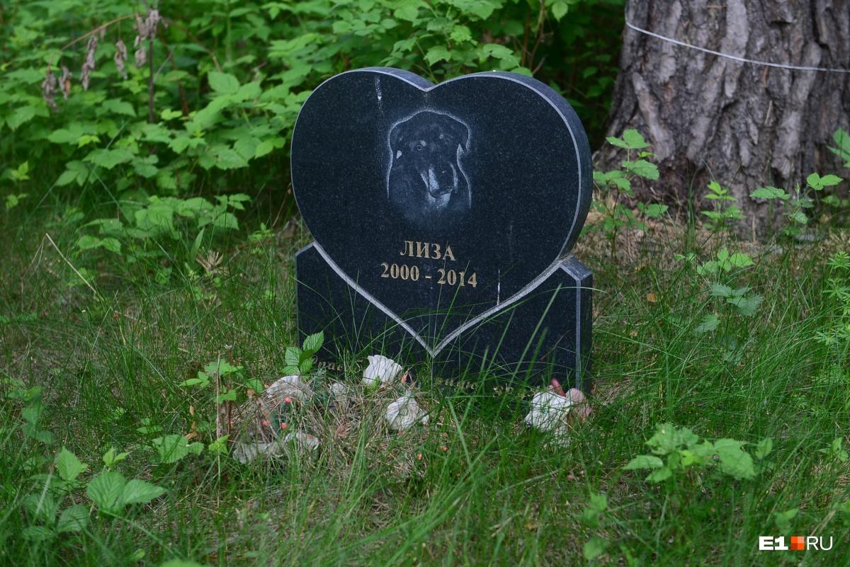 Могила лабрадора Лизы — одно из первых захоронений. Собака принадлежала молодому человеку и была его первой питомицей. Хозяин приезжает на могилу раз в год. Он взял второго лабрадора