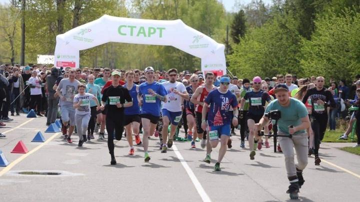 «Ростелеком» приглашает красноярцев на праздник «Зеленый Марафон»