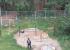 После войны с жильцами застройщик признал, что неправильно поставил забор на детской площадке в УНЦ