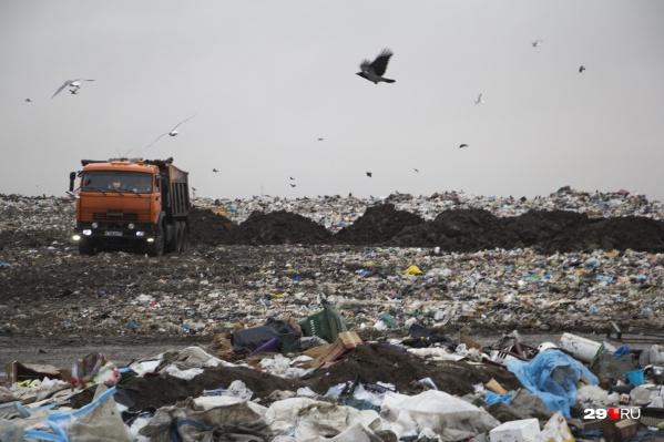 В правительстве области хотят создать межмуниципальный мусорный полигон вместо существующих в Архангельске, Северодвинске и Новодвинске