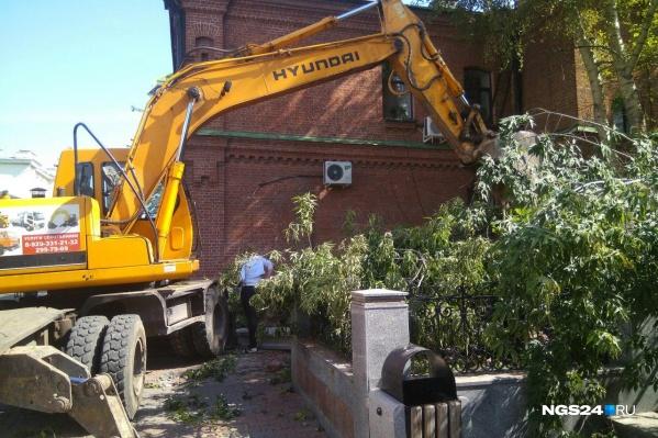 Сегодня в сквере на Кирова и Мира работала спецтехника