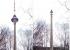 Достроить или не достроить? Скульптор создаст 12-метровый памятник телебашне на Широкой речке