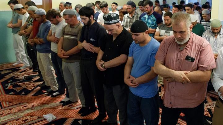 «Последний день жертвоприношений»: волгоградские мусульмане завершают праздновать Курбан-байрам