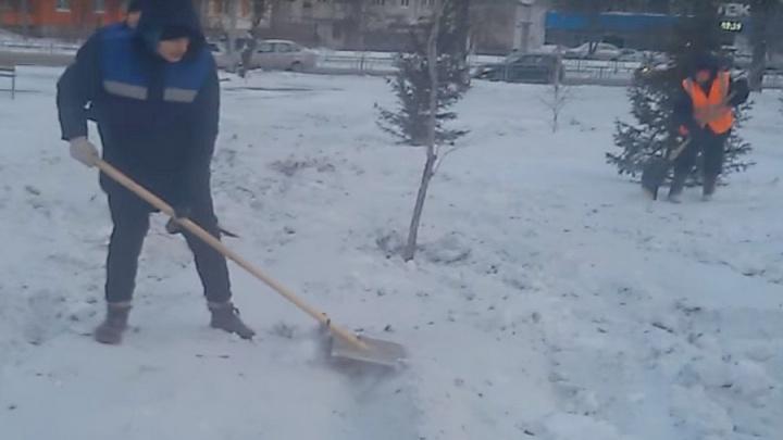 «Чтобы выглядел аккуратно»: в сквере на Копылова рабочие выравнивают снег перед приездом Путина