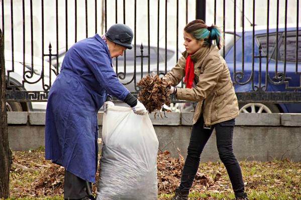 Снимок «королевы Великобритании» из Екатеринбурга набрал 535 голосов — почти в два раза больше, чем ближайший конкурент