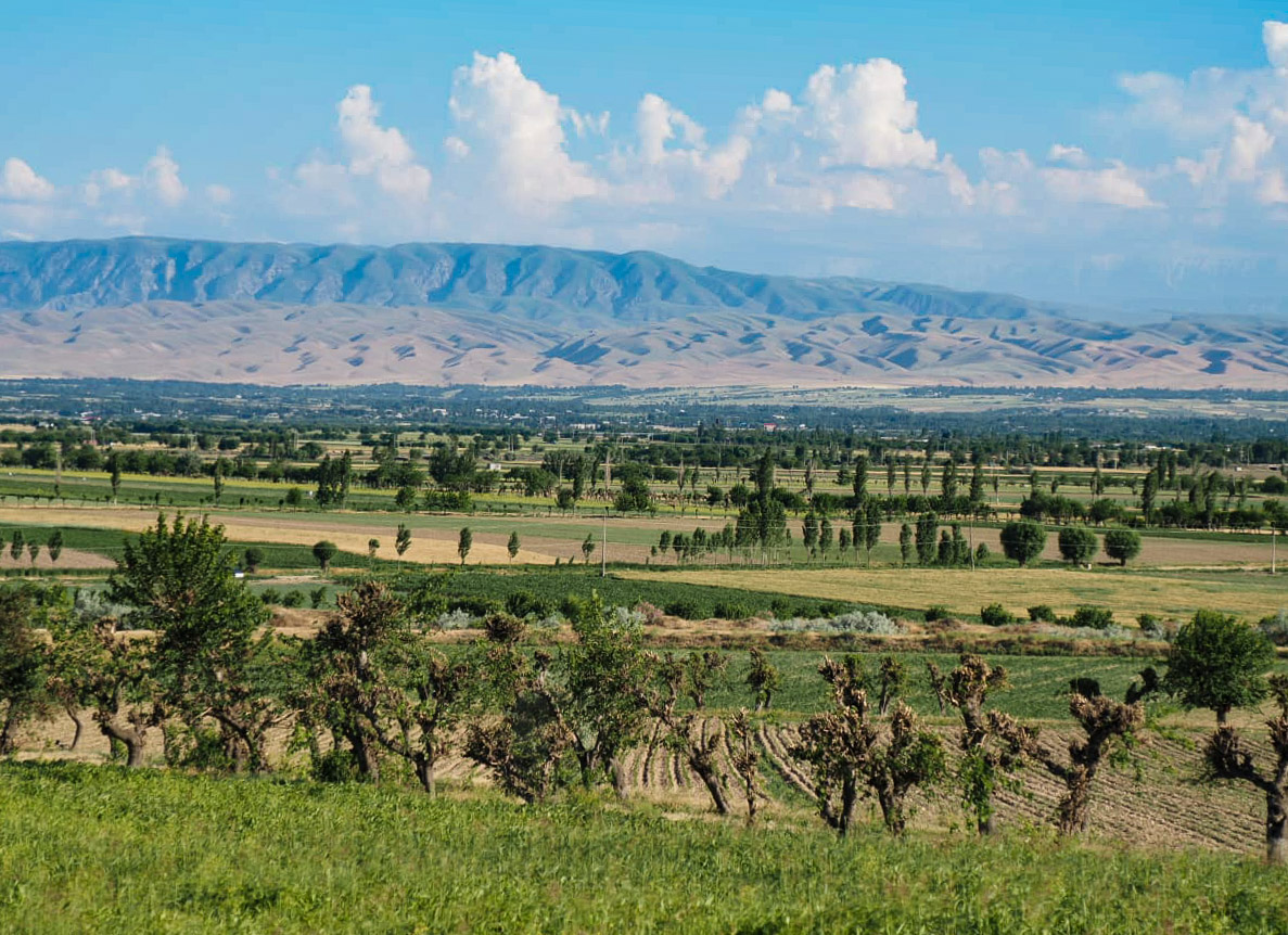 Таджикистан, Истаравшан