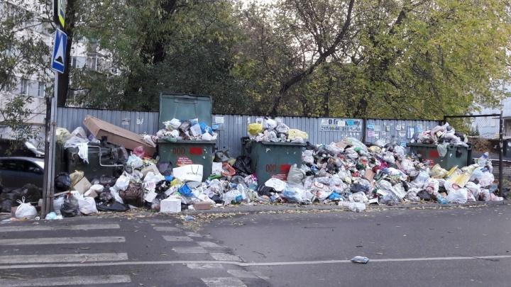 «Чтобы мы быстрей бежали»: прокурор указал Дубровскому и его заму на нерешённую проблему с мусором