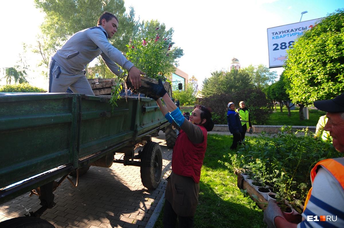 Как провести будни и День России: смотрим на гонку флотов, озеленяем город и отрываемся с Disturbed