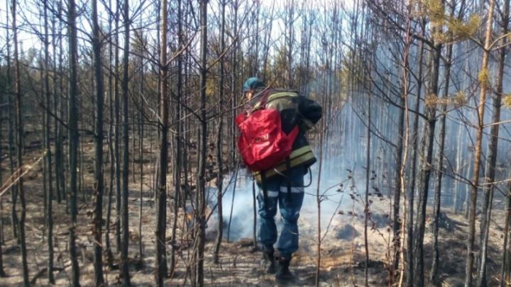 В Кетовском районе опять пожары. Возгорание произошло между Иковкой и Просветом