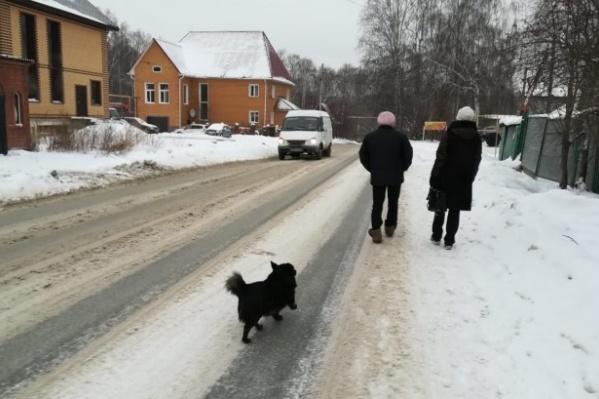 Жителям частного сектора Дзержинского района придётся ходить всю зиму до ближайшей остановки по дороге