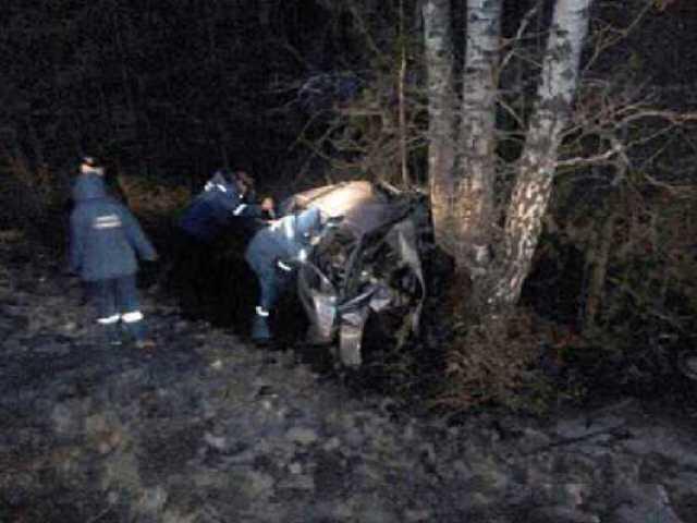 Автомобиль на полном ходу протаранил дерево