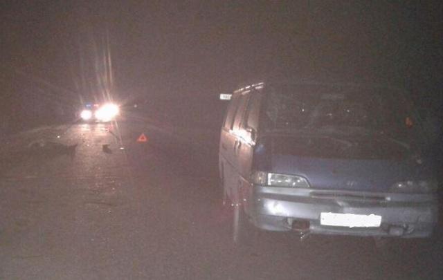 На трассе в Башкирии микроавтобус насмерть сбил пешехода