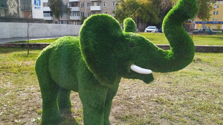 В центре Кургана появился вечнозеленый слон