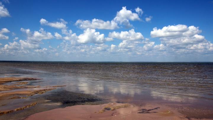«Море» по колено: отправляемся на самое большое солёное озеро Омской области