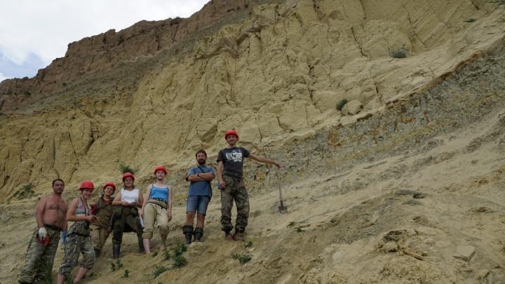 Кости динозавров обнаружили при раскопках под Ачинском