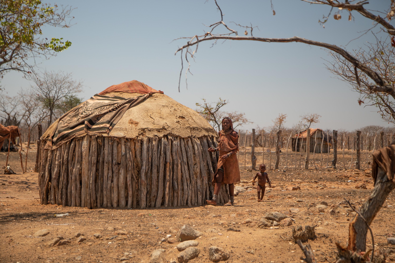 В основном племена гереро и химба занимаются скотоводством