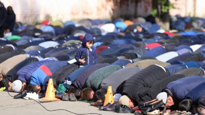 Курбан-байрам 2019 в Ярославле отметили сотни мусульман: фото и видео с улицы