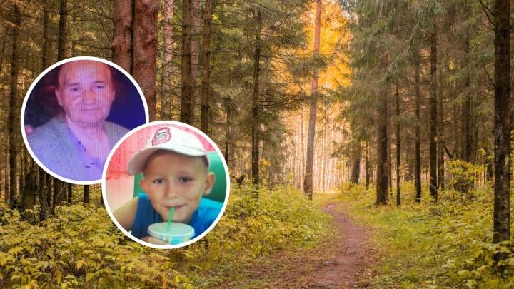 Искали всю ночь: в лесу пропали бабушка и девятилетний внук