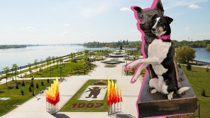 На Стрелке презентовали памятник бездомной собаке. Но там его не поставят