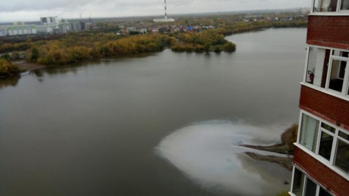 Кипяток или сбросы. Что сливают в реку Мулянку на Парковом?