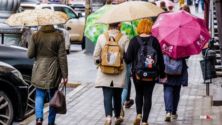 МЧС предупреждает о сильных дождях и ветре в Прикамье