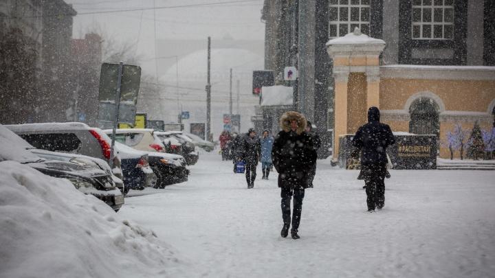 Синоптики ждут порывов ветра до 23 м/с: к Новосибирской области приближается циклон
