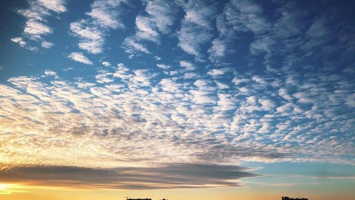 Новосибирцев восхитил красочный весенний закат