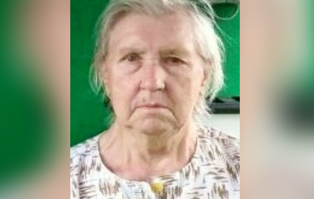 Ушедшую за лапником в Ярославской области бабушку нашли погибшей
