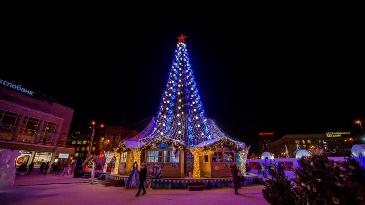 Власти заказали новогоднюю ёлку на площадь Ленина — она появится уже через месяц
