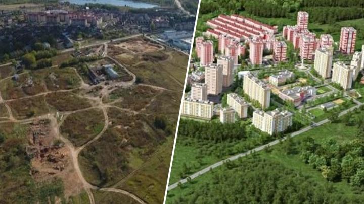 «Грозит социальный коллапс»: ярославцы опубликовали петицию против глобальной застройки за Волгой