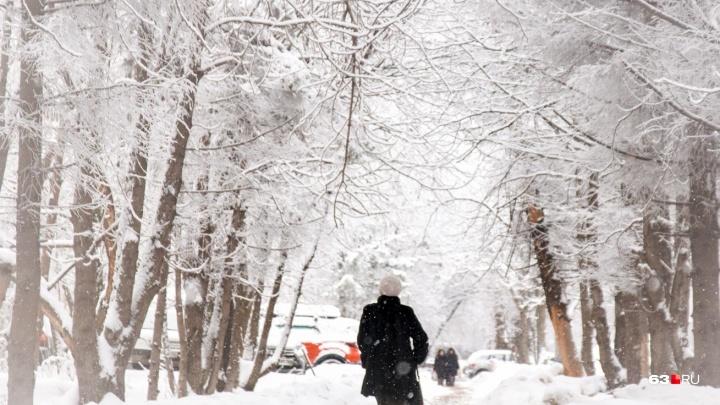 Январские морозы в ноябре: в Самарской области похолодает до -23 градусов