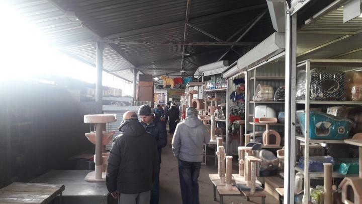Слишком близко к железной дороге: «Птичий рынок» в Самаре пустят под снос
