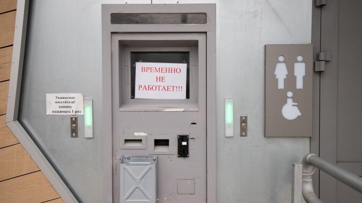 В Ростове пообещали установить биотуалеты на Пушкинской и на автобусных конечных