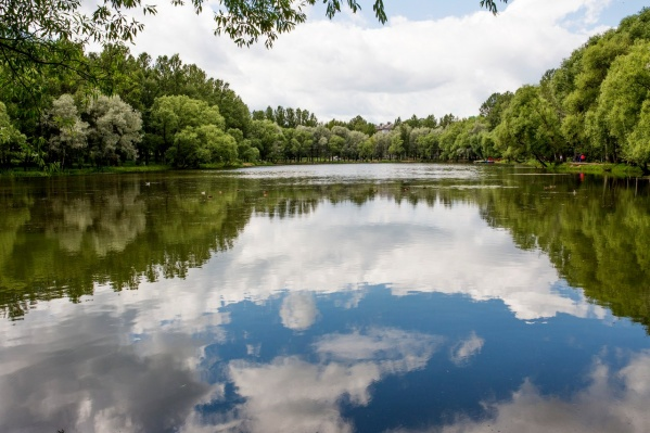 Скоро в Ярославле станет по-летнему тепло