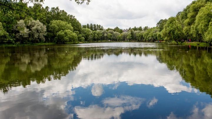 В Ярославль придёт летняя жара: синоптики рассказали о погоде на 9 мая и ближайшую неделю